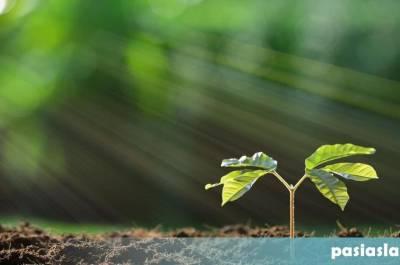Ανάλυση εδάφους, πότε και πώς